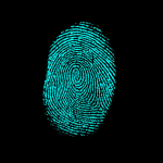 algoritma fingerprint